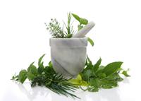 plantes - naturopathie - consoGlobe
