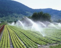 irrigation eau