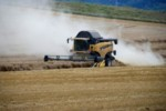 pesticides dans l'agriculture