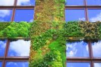 Habitat écolo