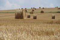 les sols agricoles