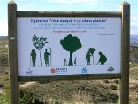 Direct Energie reforestation