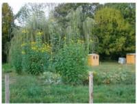 jardin de vérane