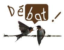 debat