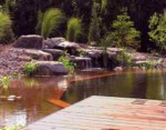Baignez vous durable avec une piscine naturelle - Combien coute une piscine naturelle ...