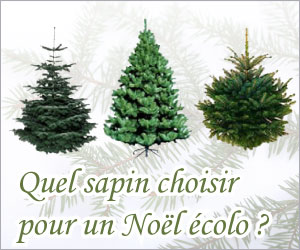sapin noel