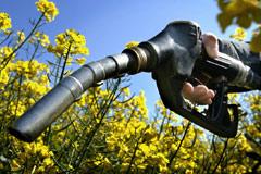 carburant - agrocarburant - consoGlobe