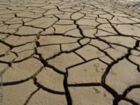 pollution des sols
