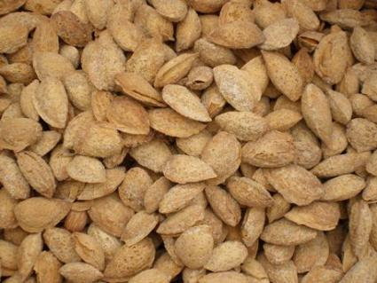 production mondiale amandes