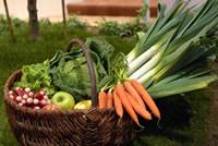 légumes - circuit court - consoGlobe
