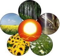 L'avenir de la bioénergie?