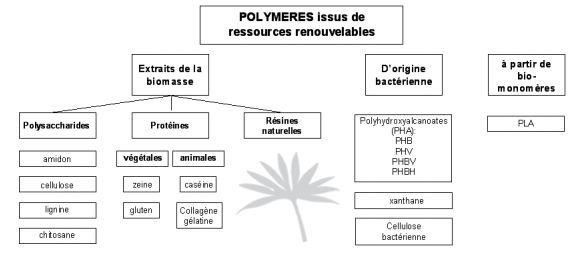 bioplastiques.JPG