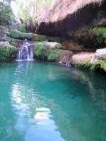 piscine naturelle et bio