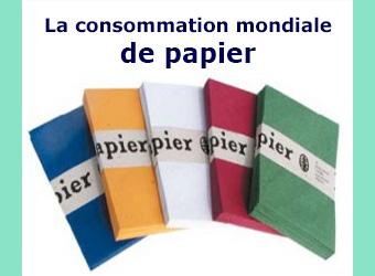 consommation mondiale de papier