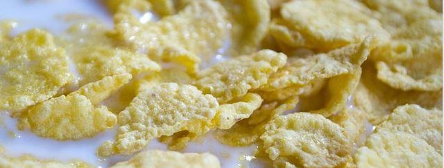 consommation de corn flakes