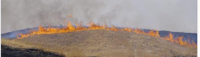 incendies et rechauffement