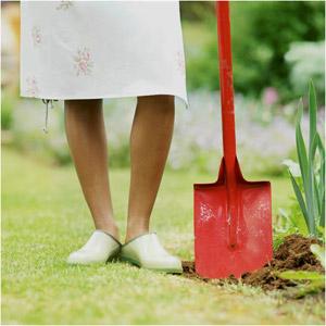 article jardin