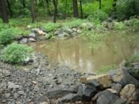 nitrates dans les rivières