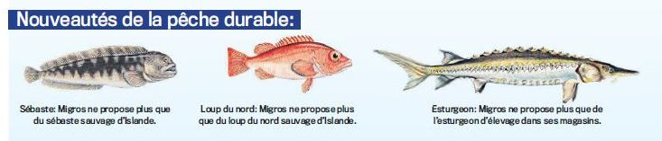 poissons-peche-durable-migros1.JPG