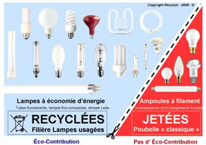 Developpement durable article