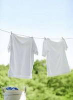 bore dans la lessive